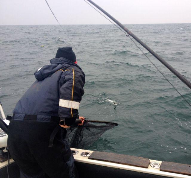 Höstfiske 4