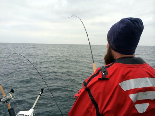 Fiske J 3